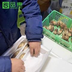 供销社产地直采| 2020年香格里拉新鲜松茸250g尝鲜装 顺丰包邮