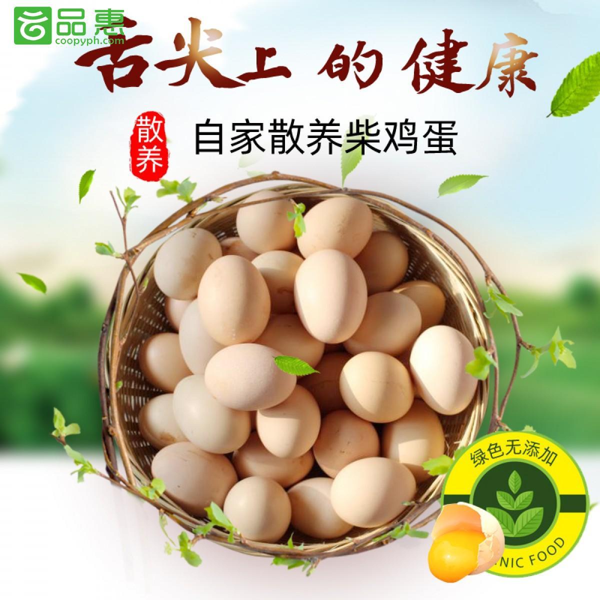 云南供销定点扶贫产品|宣威迤那村 宣威逶村农家散养原生土鸡蛋30枚