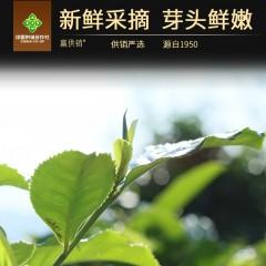 赢供销 永德行者大榆普洱茶生茶饼357g 正山原料茶条粗壮滋味均衡