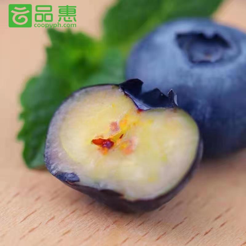 特大果18mm以上,125g*4盒顺丰包邮蓝莓鲜果云南高原水果现摘现发