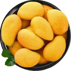 玉溪元江小台农芒果9斤装 香浓肉厚 鲜嫩爽口 香甜多汁