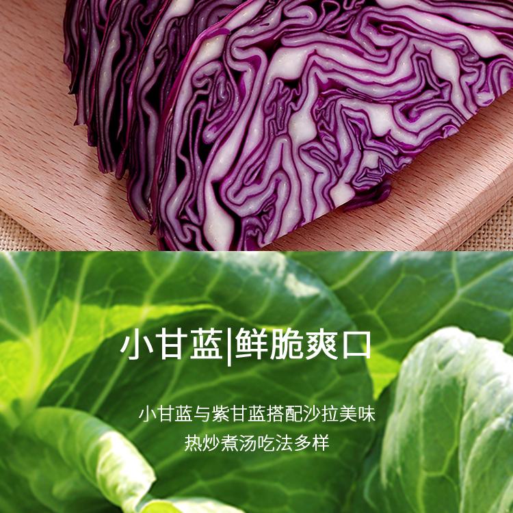 新鲜蔬菜_06.jpg
