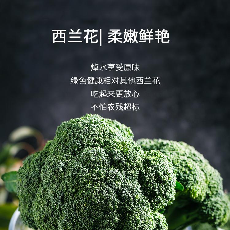 新鲜蔬菜_08.jpg