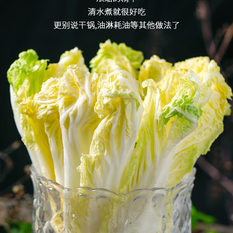 新鲜蔬菜_12.jpg