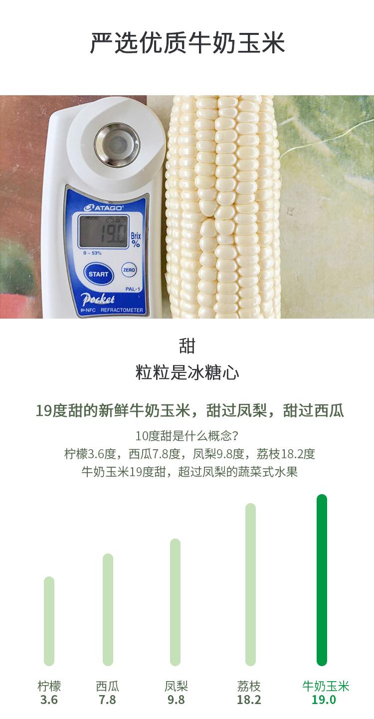 牛奶玉米修改2_03.jpg