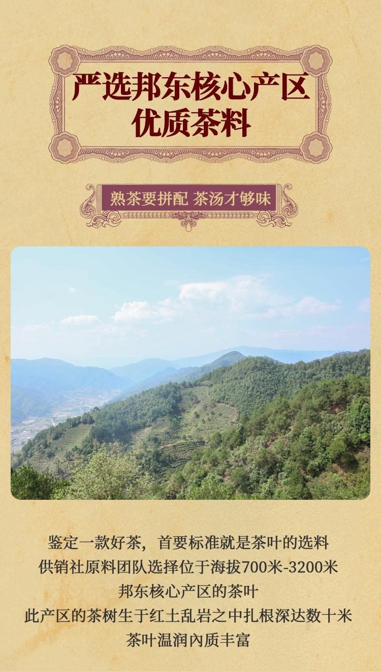 2017春--邦东熟茶---修改终_03.jpg
