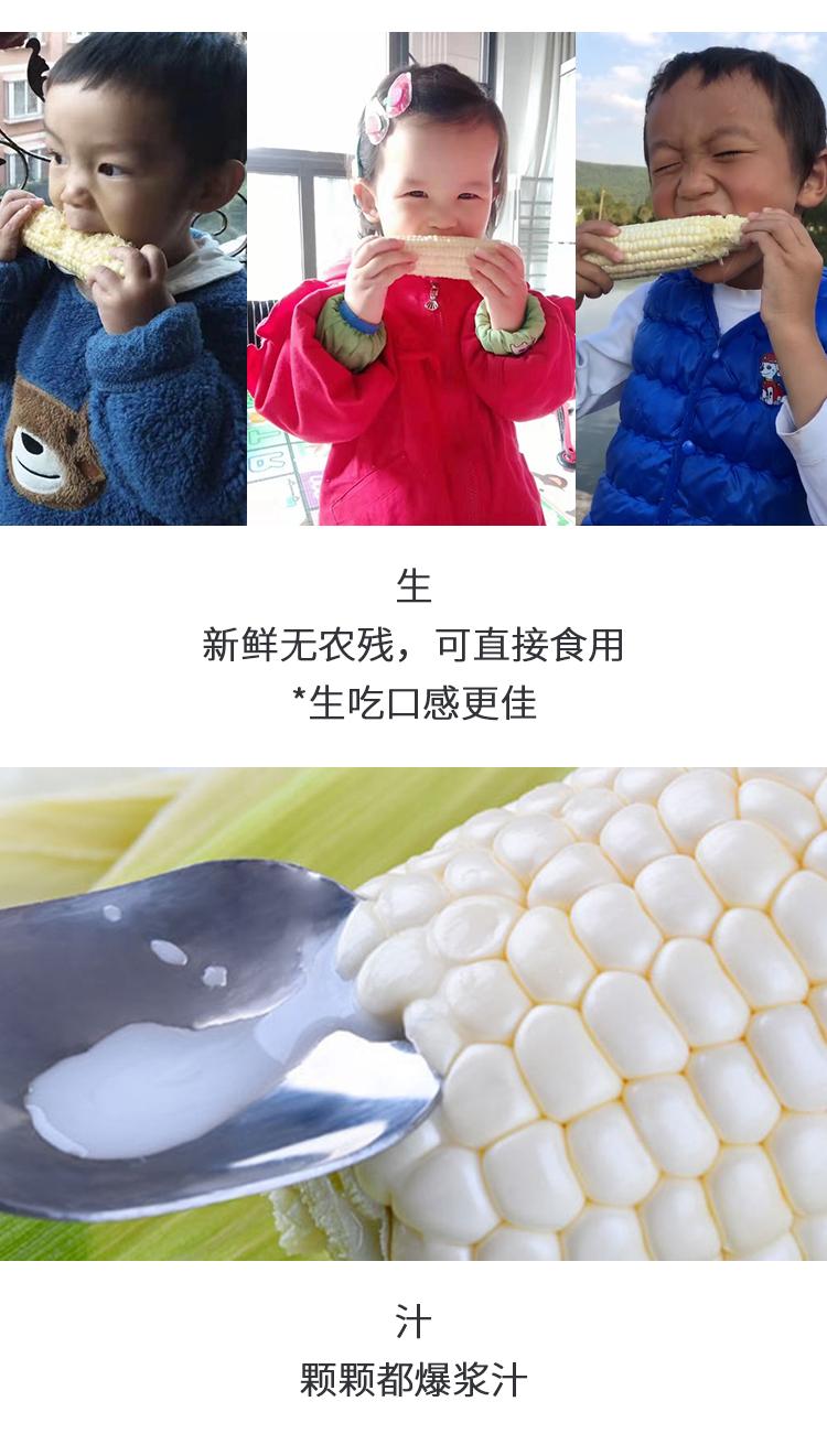 牛奶玉米修改2_04.jpg