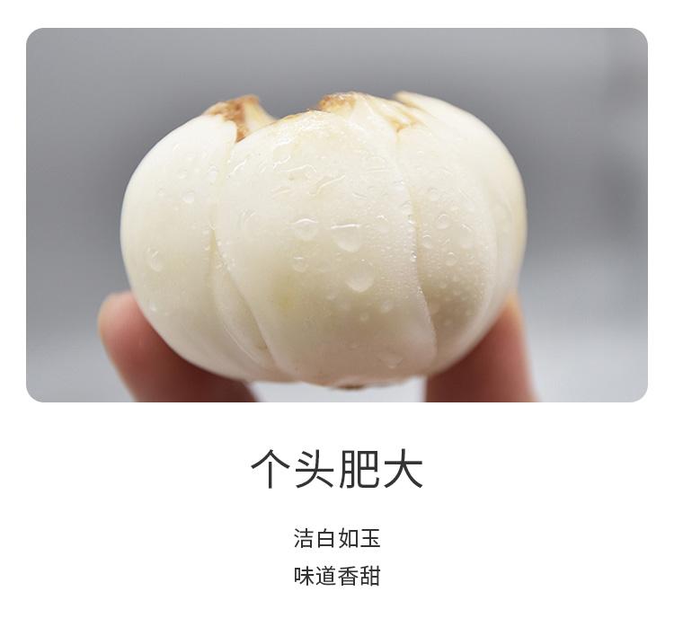 新鲜百合详情页_03.jpg